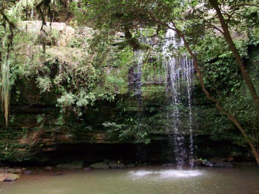 Localizada em Linha Harmonia da Costa é a mais bela cascata da região. Com seus traços rústicos e naturais, a Cascata do Chuveirãooferece muita beleza natural, ar puro e um belíssimo cartão postal para você fotografar.