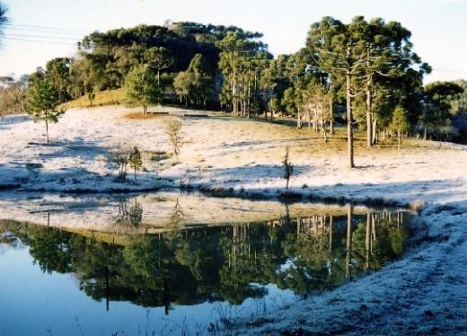 Parque das Araucárias - neve